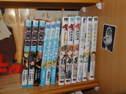 Manga import - photo1 -